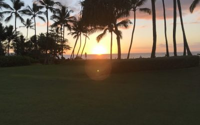 More to See on Maui